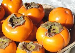 Buyer from Italia is looking for PERSIMMON SHARON