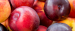 Wholesaler from the Netherlands is looking for Stone fruits